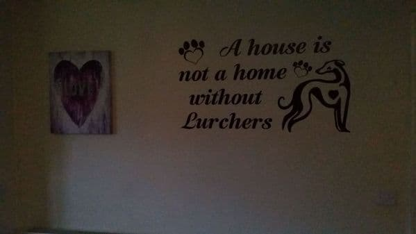A House Is Not A Home Without A Lurcher - Lurcher Wall Sticker